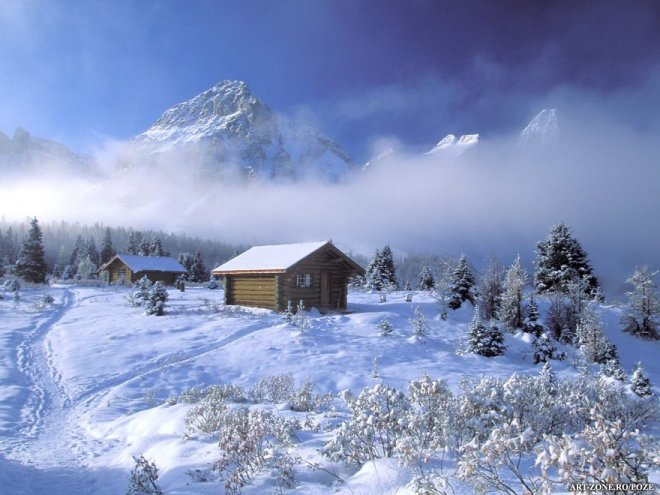 iarna-de-vis