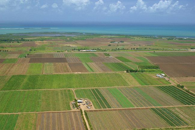 teren-arabil