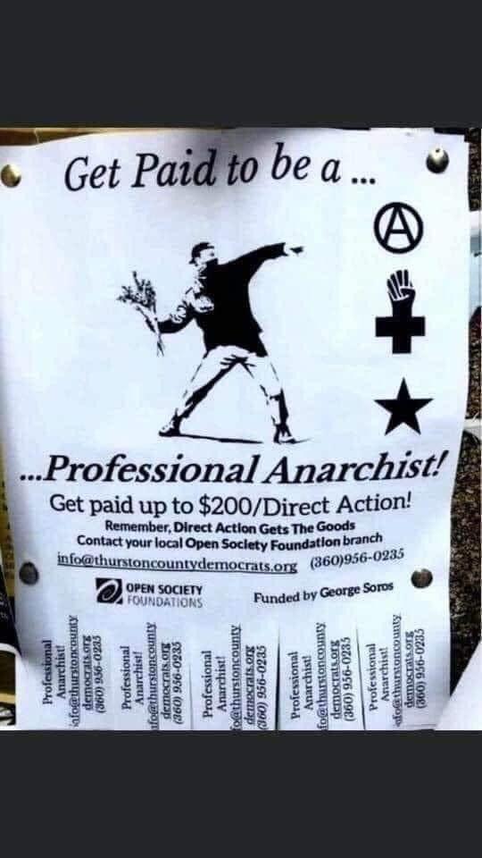 profesional anarhist
